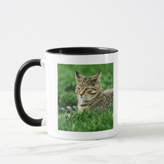 Cat lying in grass mug