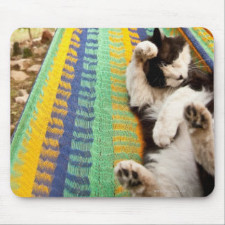 Cat lying in Mayan Mexican hammock Mouse Pad
