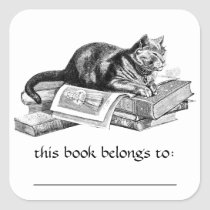 Cat Lying On Books Bookplate Stickers