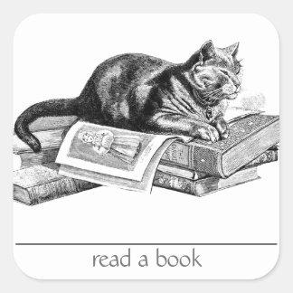 Cat Lying on Books Square Sticker