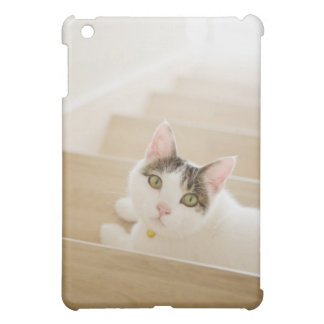 Cat lying on stairs iPad mini case
