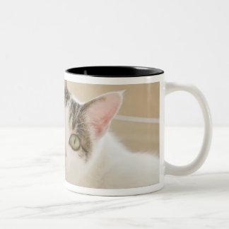 Cat lying on stairs Two-Tone coffee mug