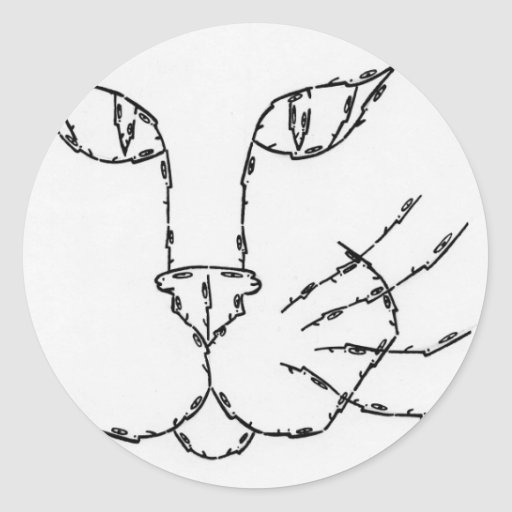 CAT made of Faces Classic Round Sticker