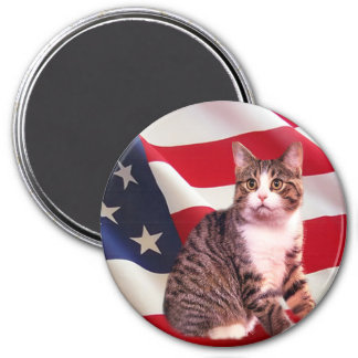 Cat Magnet All American