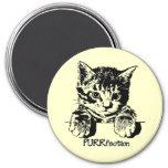 Cat Magnet Purrfection