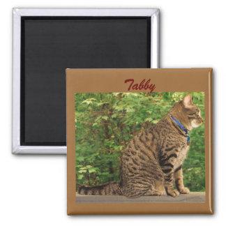 """Cat Magnet """"Tabby"""""""