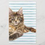"""Cat, Maine Coon<br><div class=""""desc"""">Cat,  Maine Coon</div>"""
