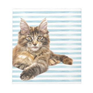 Cat, Maine Coon Notepad