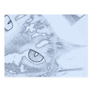 Cat Mask Postcard