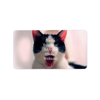 Cat meme - cat funny - funny cat memes - memes cat label