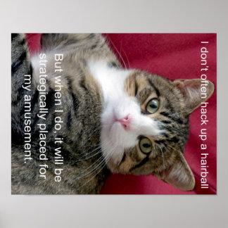 Cat Meme Poster