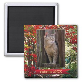 Cat Memorial or Keepsake Photo Frame Magnet