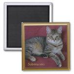 Cat Memorial Photo Frame Magnet Refrigerator Magnet