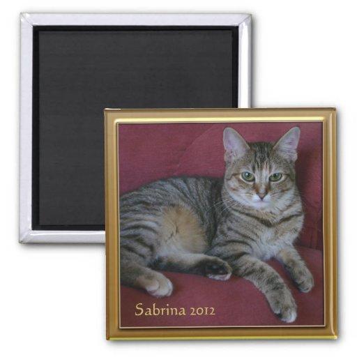 Cat Memorial Photo Frames