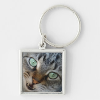 cat meowing keychain