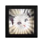 CAT MERCHANDISE GIFT BOX