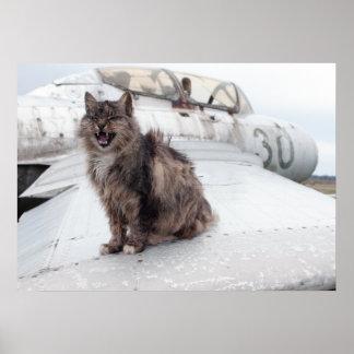 Cat & MiG Poster