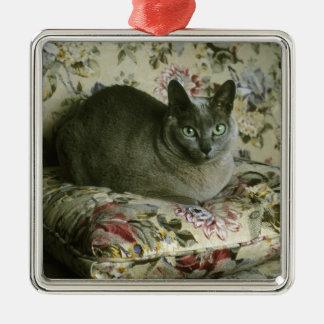 Cat, Minnie, Tonkinese. Metal Ornament
