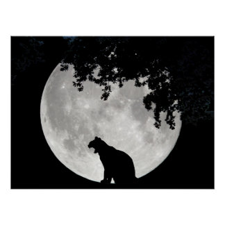 Cat Moon and Branches Posters