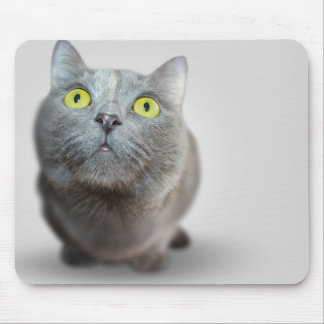 Cat Mouse Mat, Green Eyes Mouse Pad