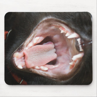 Cat Mouth Wide Open Mouse Pad