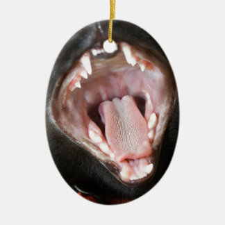 Cat Mouth Wide Open Oval Ceramic Ornament