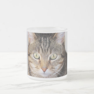 cat 10 oz frosted glass coffee mug