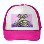Cat n Kitten Hat