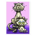 Cat n Kitten Postcard