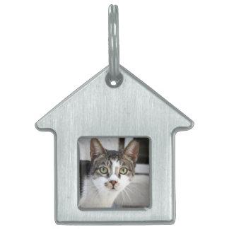 Cat Name Tag Pet Tags