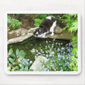 Cat named Gandalf and forget me nots  - photograph Mouse Pad