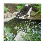 Cat named Gandalf and forget me nots  - photograph Tile