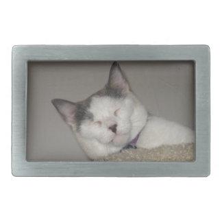 Cat Nap Belt Buckle