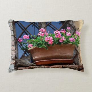 Cat Nap Decorative Pillow