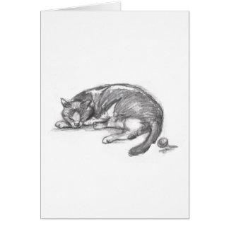 Cat Nap Greeting Cards