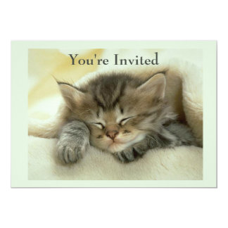 Cat Nap Invitation