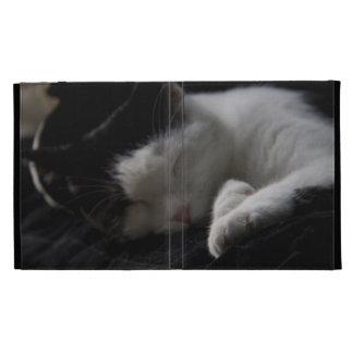 Cat Nap iPad Case