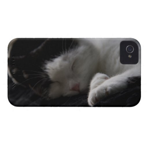 Cat Nap iPhone 4 Covers