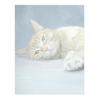 Cat Nap Letterhead