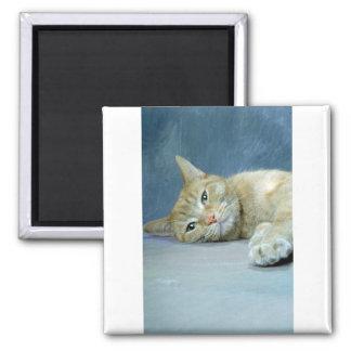 Cat Nap Fridge Magnets