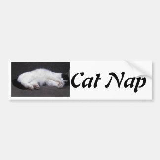 Cat Nap - Mittzz C the Cat Peeks Bumper Stickers