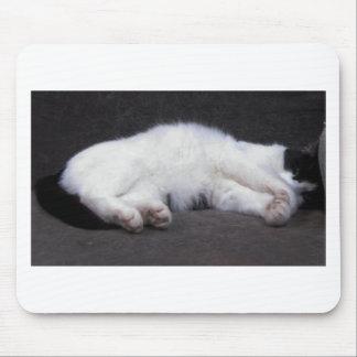 Cat Nap - Mittzz C the Cat Peeks Mouse Pads