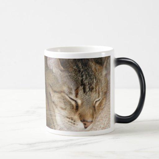 Cat Nap Morph Cup Coffee Mug