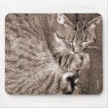Cat Nap Mouse Mat