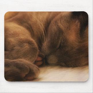 Cat Nap Mousepad