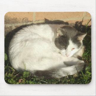Cat Nap Mousepad 2