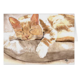 Cat Nap Notecard Cards