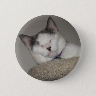 Cat Nap Pinback Button