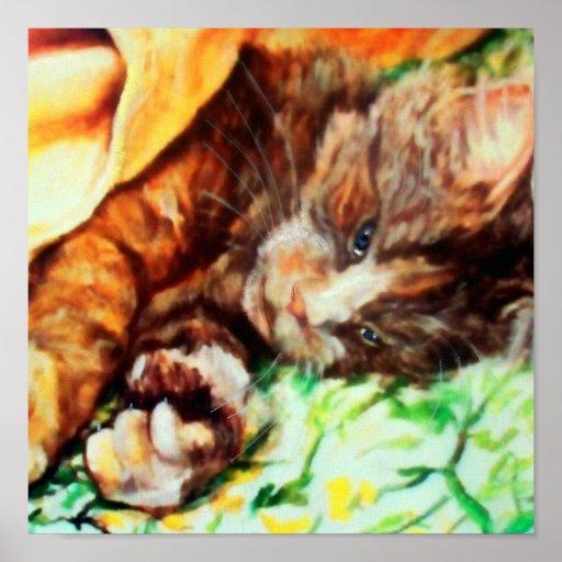 Cat Nap Posters
