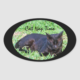 Cat Nap Time Oval Sticker